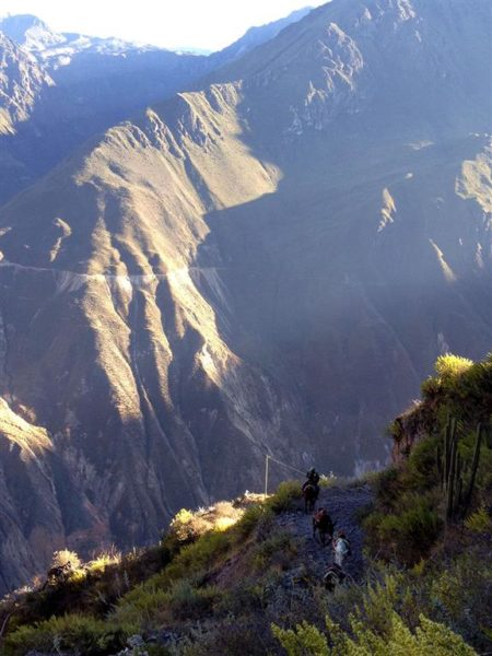 Colca canyon trail Peru