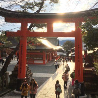 Betoverend Kyoto op de fiets