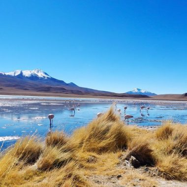 Rondreis Zuid-Amerika: reisroute-inspiratie en tips Latijns Amerika