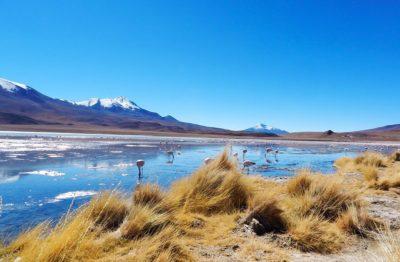 Reisroute inspiratie en tips Zuid-Amerika
