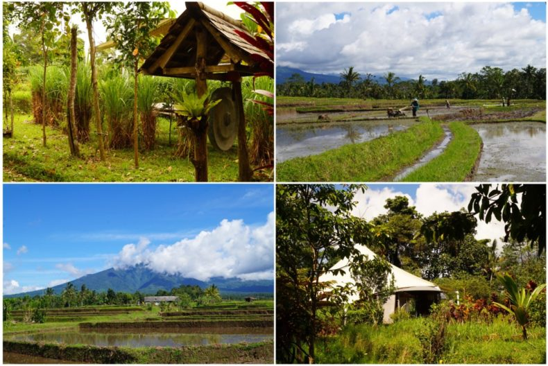 Bali-Silent-Retreat