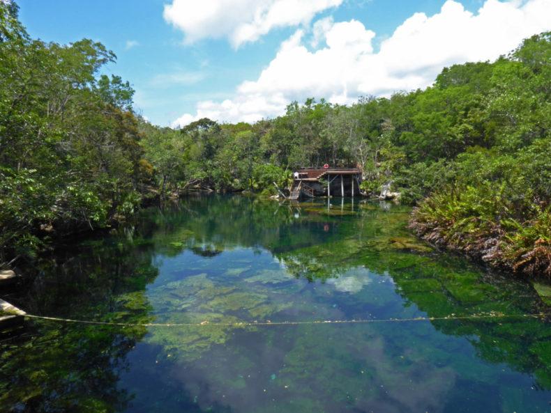cenote-jardin-del-eden-mexico