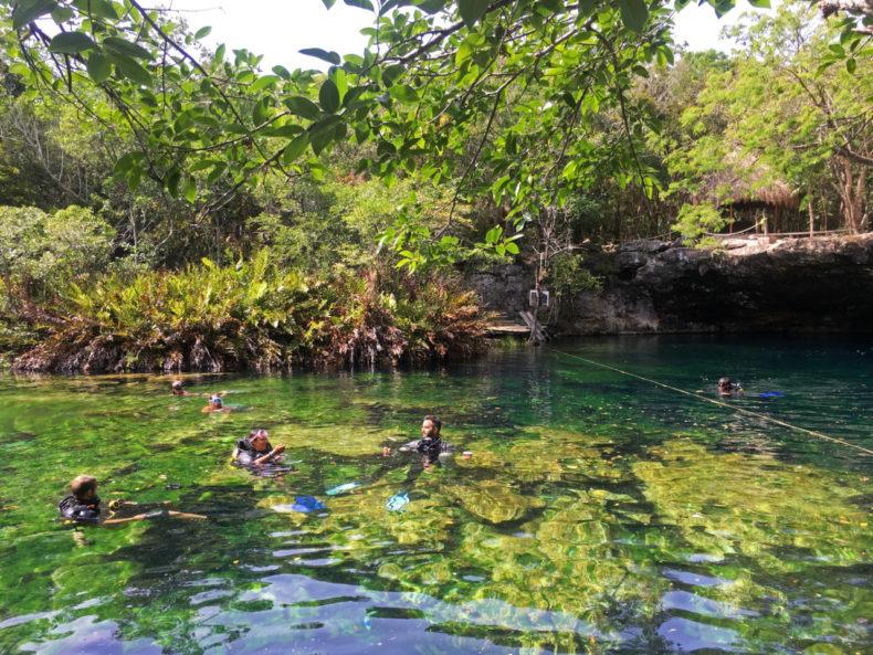 duiken-cenote-jardin-mexico