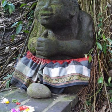 Ubud, Bali: cultuur, natuur, yoga en culinaire hotspot