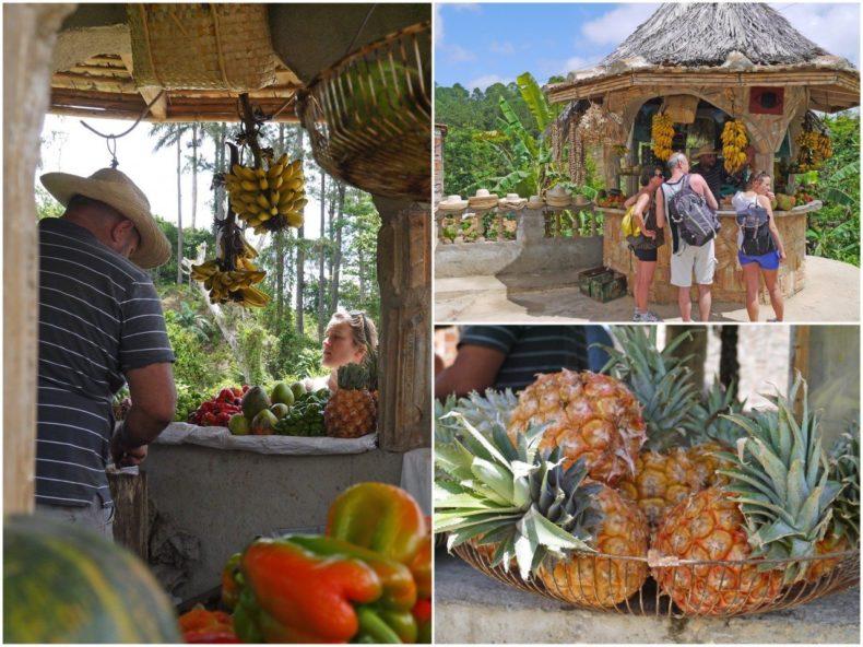 fruit trinidad cuba