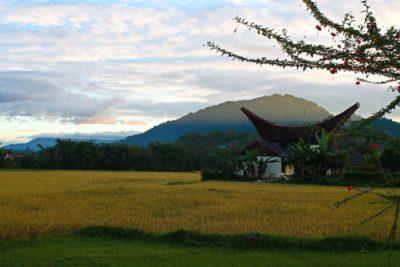 Bizarre begrafenis rituelen in Zuid Sulawesi