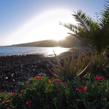 Altijd zonnig Lanzarote: een (na)zomerse roadtrip