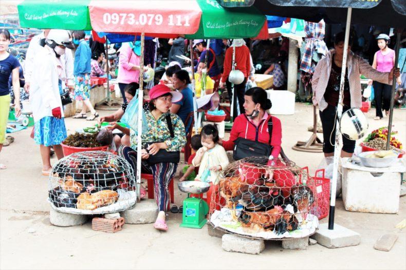 Easy-Rider-Vietnam-Markt