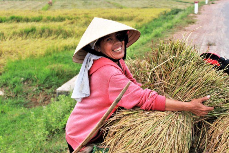 Easy-Rider-Vietnam-Rijstvelden-Lokale-Mensen