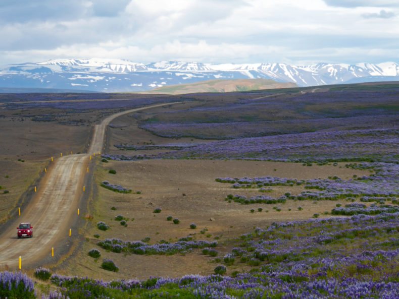 roadtrip-ijsland