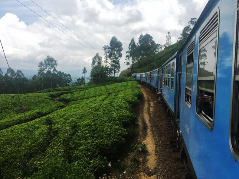 treinreis-kandi-ella-sri-lanka