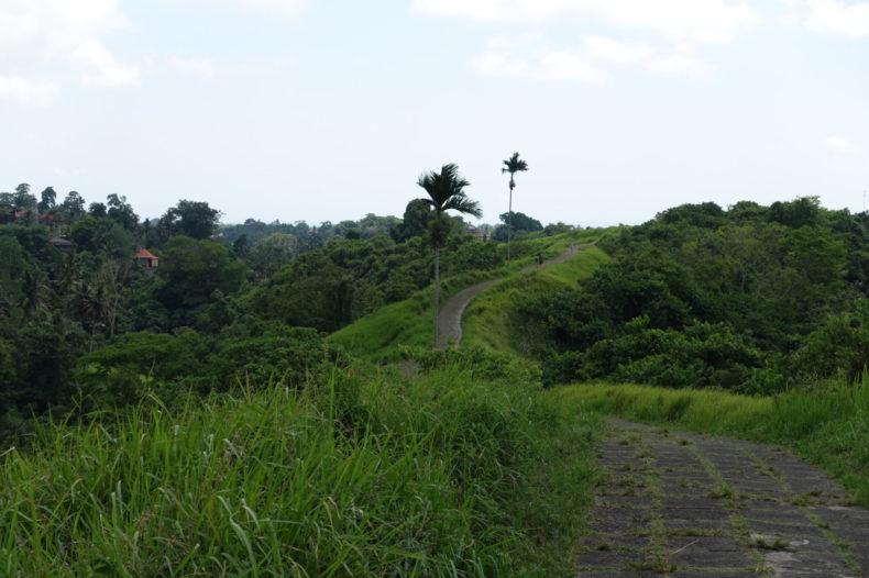 Bali-Ubud-Campuhan-wandeling