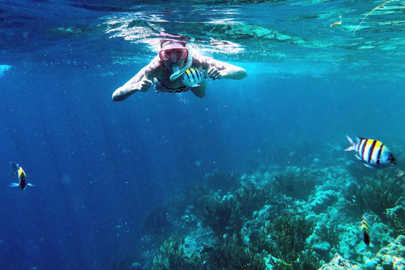 snorkelen-Menjangan