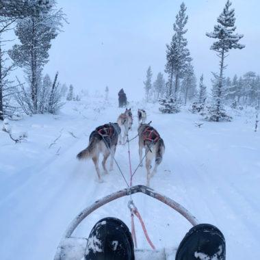 Winterwonderland in Zweeds Lapland: van Kiruna naar Björkliden