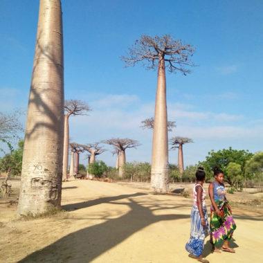 Reisadvies Madagascar: De 10 meestgestelde vragen over reizen door Madagascar