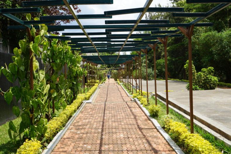 genocide memorial museum kigali rwanda