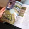 nederland reisreport