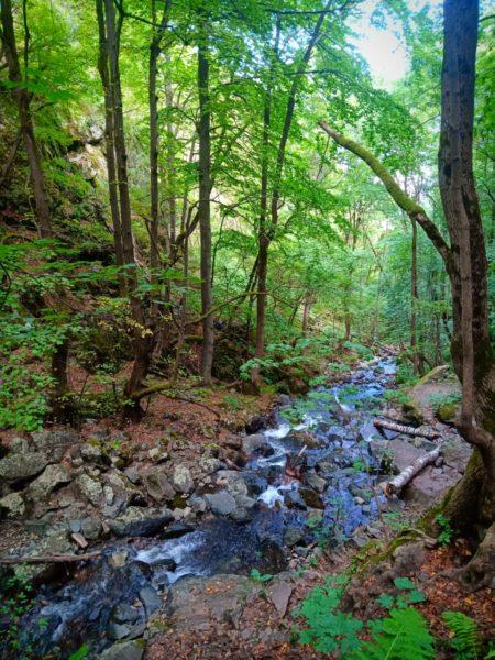 bezienswaardigheden bulgarije - boyana hike